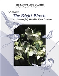 Photo of Choosing The Right Plants for a Beautiful, Trouble-Free Garden