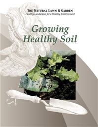 Photo of Growing Healthy Soil