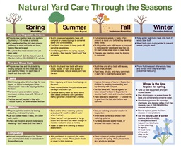 Photo of Natural Yard Care Through the Seasons - Calendar