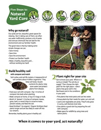 Photo of Five Steps to Natural Yard Care